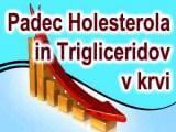 FHES za Manj Holesterola in Trigliceridov