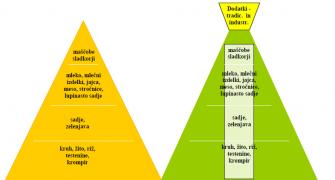 Kako Izgleda Nova Prehranska Piramida?