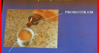 Bio rudninsko-vitaminski sistemi (posnetek seminarja 2x)