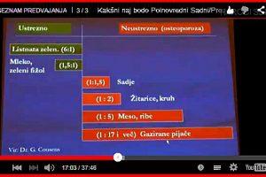 Razstrupljanje s Sadnimi/Presnimi dnevi ( 3 x VIDEOPOSNETEK )