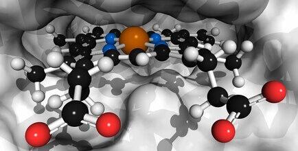 Koliko sladko-strupena je naša kri?
