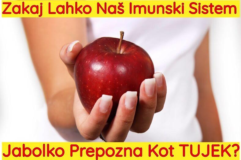Imunski sistem lahko prepozna jabolko kot tujek