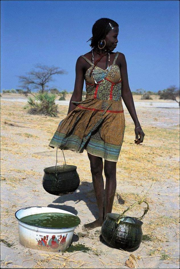 Ljudstvo Kanebu nabira spirulino na jezeru Čad