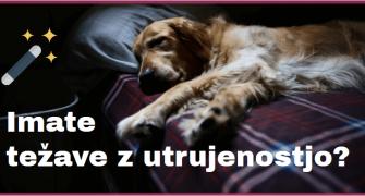 Utrujenost: ste morda slabokrvni?