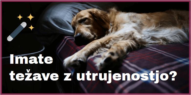 Težave z utrujenostjo?