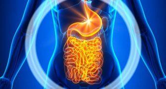 Proti raku – pomoč iz črevesja